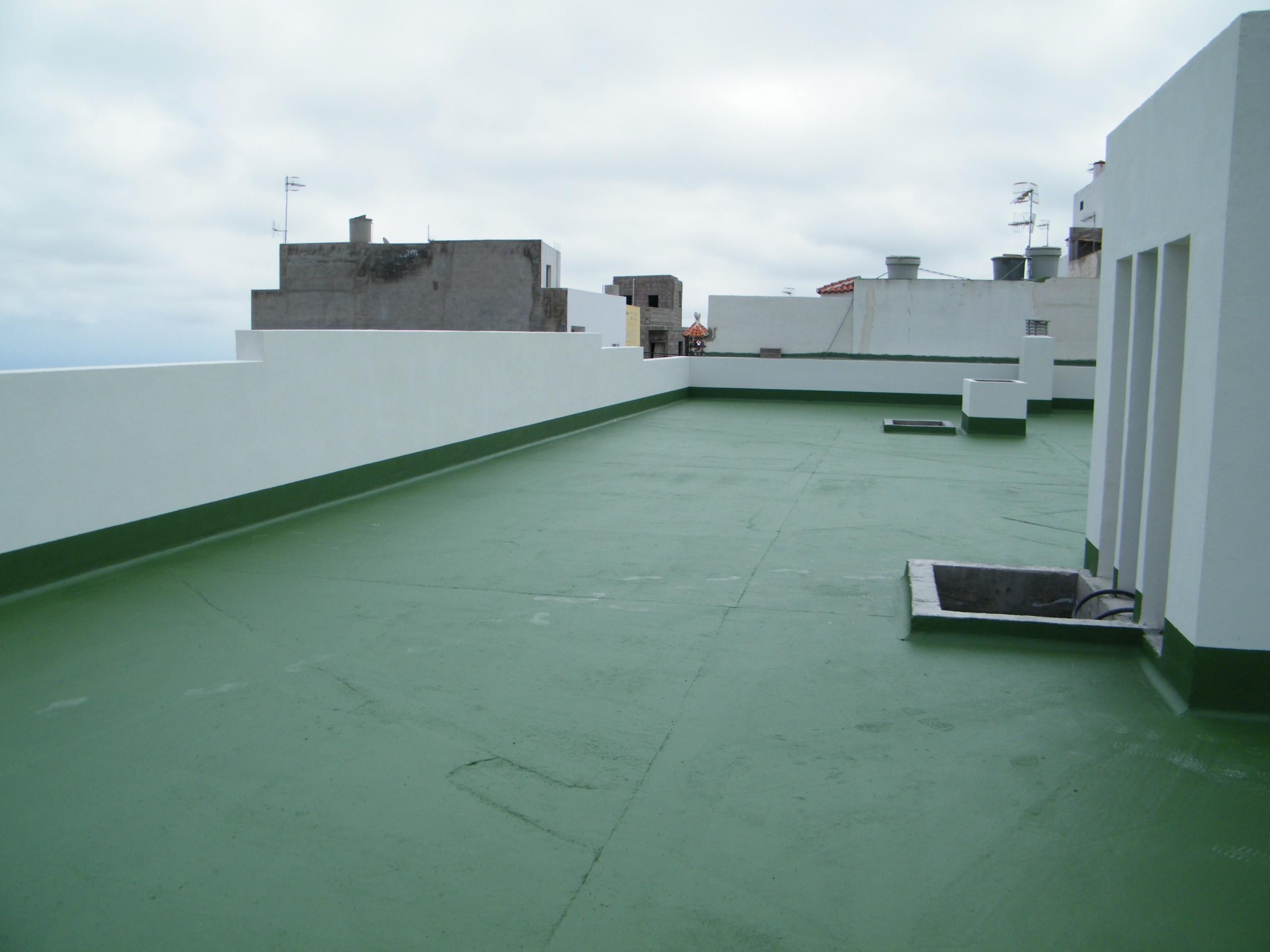 tető4